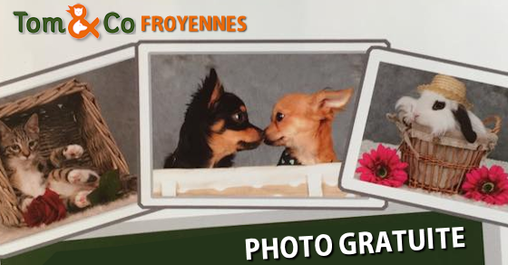 20150428-photogratuite-froyennes
